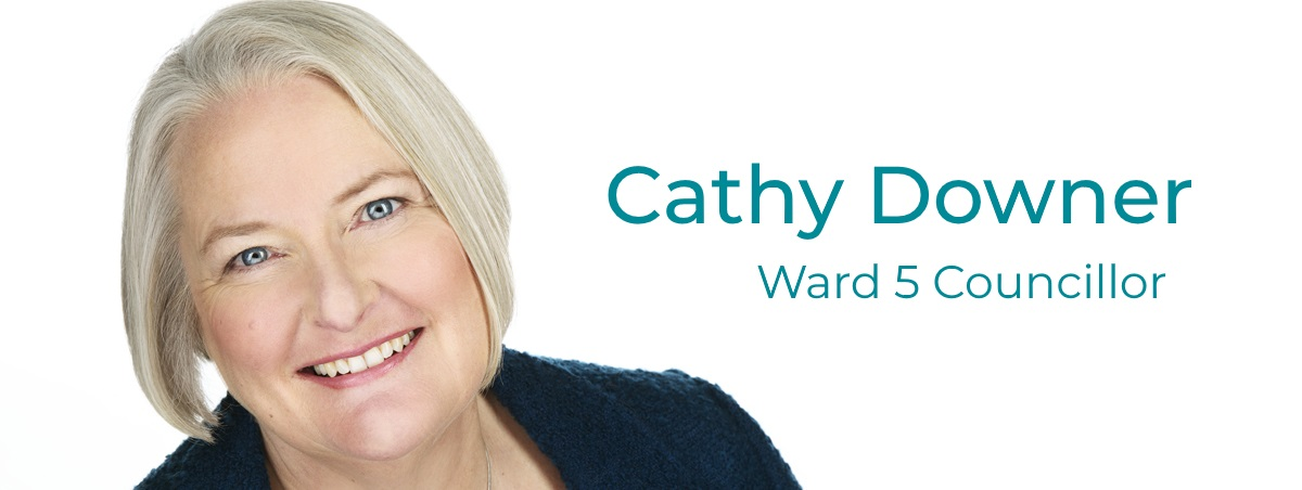 Re-Elect Cathy Downer